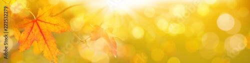 Foto Murales Herbst Hintergrund  -  Indian Summer  -  Bokeh