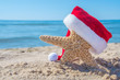 starfish in beach sand wearing Christmas Santa cap