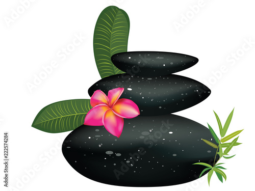 Black pebble with flower - 222574284