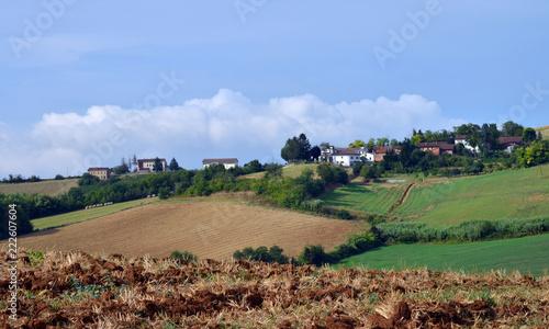 Foto Murales veduta panoramica di alcuni angoli del Monferrato, Piemonte, Italia