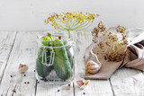 Preserved cucumbers in glass jar with dill and garlic on  table - 222608022