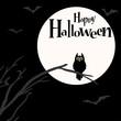 Halloween scary owl background