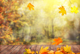 autumn leaves background - 222624422