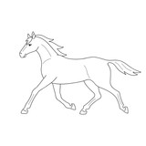 Isolated black outline running, trotting horse on white background. Side view. Curve lines. Page of coloring book. - 222649211