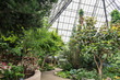 path in conservatory