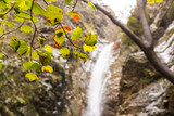 Autumn landscape with a waterfall in Troodos, Cyprus