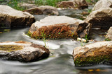 Detail view of flowing water of a small river, the water flowing past rocks covered with moss and single tufts of grass, narrow sharpening zone, flowing structure, long time exposure - 222692207
