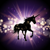 Unicorn on starburst background - 222727053