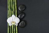 Zen stones, orchid flower and bamboo - 222737204