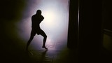 silhouette of a boxer striking in smoke - 222769881