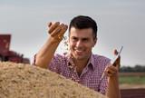 Farmer holding soybean grains in hand