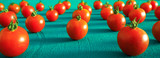 Red tomatoes cherry, scattered in a chaotic manner on a blue background. Food background. Panoramic banner
