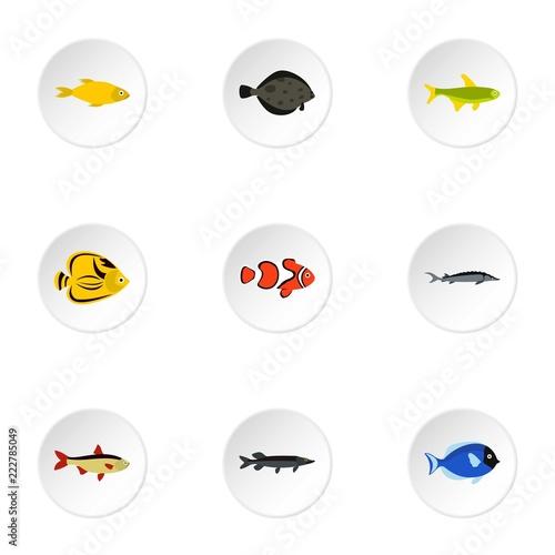 Zestaw ikon tropikalna ryba. Płaskie ilustracja 9 ikon wektorowych tropikalnych ryb dla sieci web