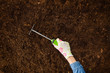 Woman hand planting a plant on a natural, soil backgroud. Camera from above, top view. Natural background for advertisements.