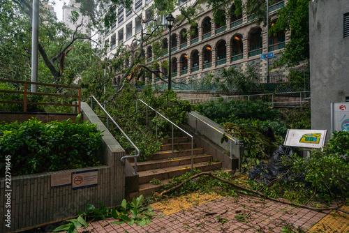 tree falling debris block the public park stairway during typhoon Ompong (Mangkhut) hit in Hong Kong