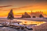 Olympic National Park, Washington, USA at Ruby Beach - 222800437