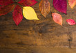 Autumn leafs background on natural wooden board