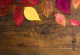 Autumn leafs background on natural wooden board - 222801667
