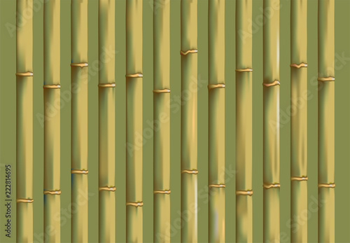 Fototapeta bamboo background design