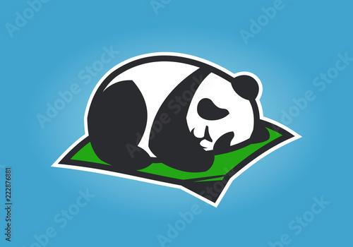 Cute panda cartoon character sleeping on a mat