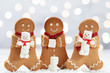 Funny Gingerbread cookie men with cute marshmallow snowman