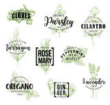 Spices and herbs lettering labels - 222886030