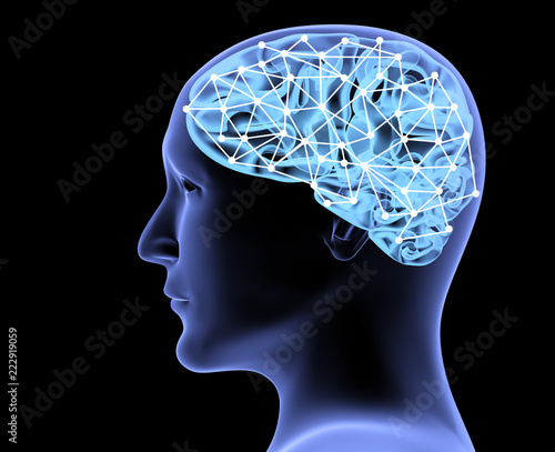 Transparent 3d head of the man and brain