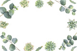 Watercolor vector banner with eucalyptus leaves and succulents. - 222922615