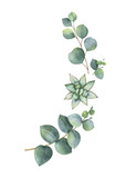 Watercolor vector wreath with eucalyptus leaves and succulents. - 222922624