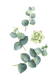 Watercolor vector wreath with eucalyptus leaves and succulents. - 222922638