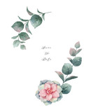 Watercolor vector wreath with eucalyptus leaves and succulents. - 222922692