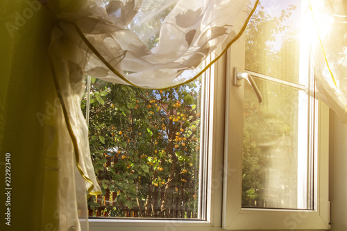 Blossoming garden outside the window of a private house. - 222923410