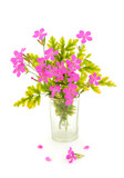 Bouquet of pink  wildflowers. - 222924482