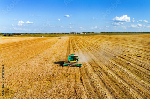 Aerial photography, combine harvester is working on a wheat field.