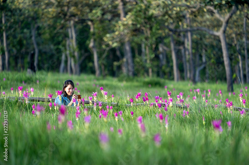 Fototapeta Young woman enjoying taking photo of pink flower field in Thailand