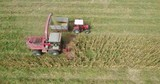 4k Aerial footage of Combine harvest corn on a field - 222963400