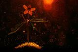 summer background flowers nature / beautiful picture design background flowers in the field - 222965462