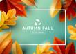 Autumn Seasonal Frame Background Top View