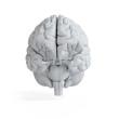 3d rendered illustration of a white brain