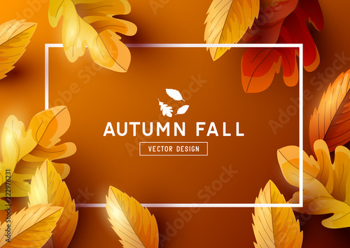 Autumn Frame Background Top View - 222976231