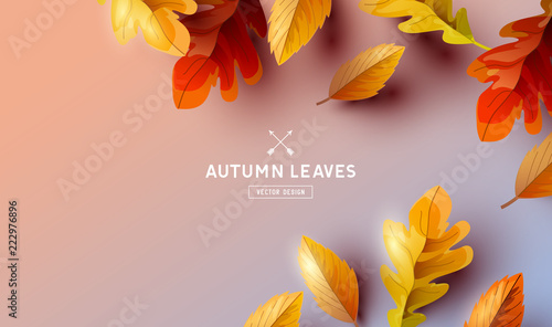 Falling Autumn Leaves Background Elements - 222976896