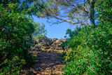 Provence, France, June 2018, path on the Regagnas mountain