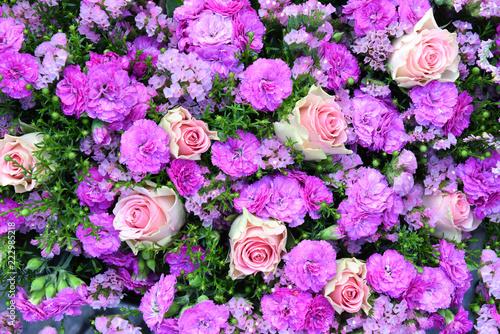 Fototapeta Blumen, Hintergrund, Wand, pink, rosa