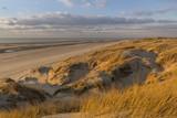 Les dunes du Marquenterre, entre Fort-Mahon et la Baie d'Authie.