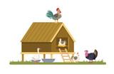 Domestic birds on the farm.