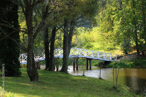 Old wooden bridge over river in summer countryside - 223029672