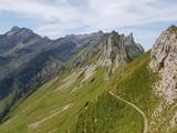 Berggrat in den Appenzeller Alpen