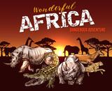 African safari animals and reptile sketch - 223085831