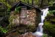 Spring House Waterfall - 223099410