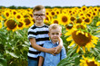 Funny boys in the field with sunflowers . Brothers play outdoors
